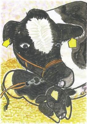 子牛の誕生、おめでとう!