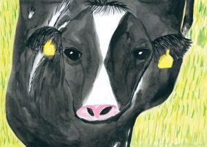 原っぱの乳牛